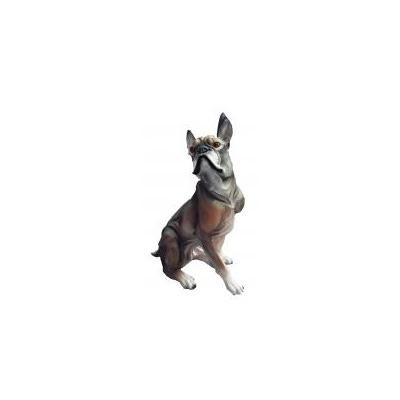 Собака Боксер малый