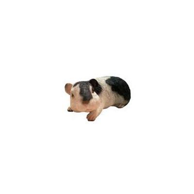 Морская свинка Н-10см,L-22см